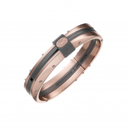 Eclisse Titanium Bangle 302