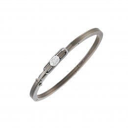 MiniFlangia Titanium Bangle 307