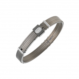Titano Titanium Bangle 312